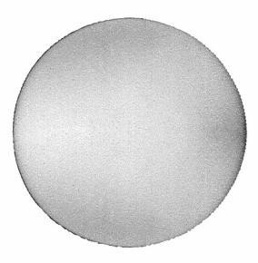 [Obr.: 18/27/bosch_lestiaca-spongia-160-mm.jpg]